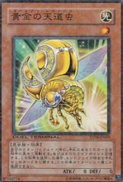 画像2: 黄金の天道虫