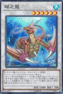 画像4: 瑚之龍